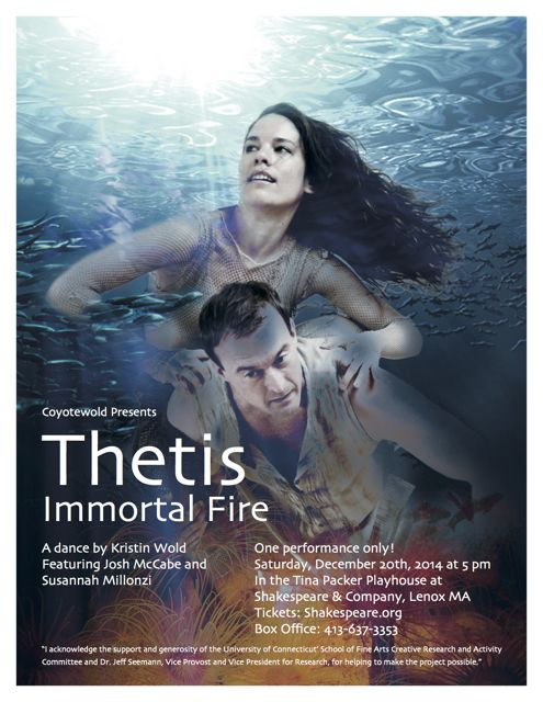 thetis poster 8.5x11 no bleed FIN-medium